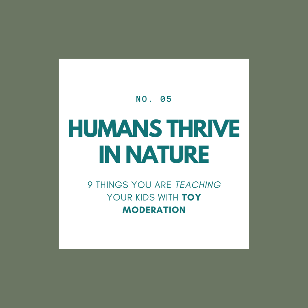 toy-minimalism-declutter-the-toys